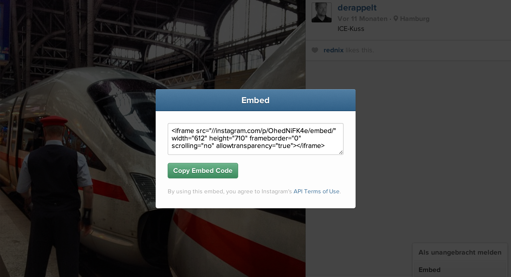 Instagram per Embed Code in Blogs/Websites einbinden (Bild: derappelt.de)